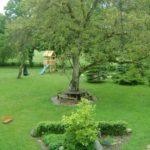W ogrodzie