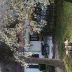 Przed domem